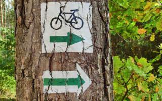 Где покататься на велосипеде в ленинградской области