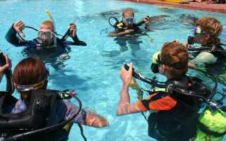 Школа подводного плавания