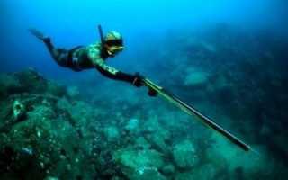Техника подводной охоты