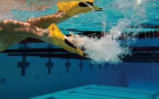 Как выбрать ласты для плавания