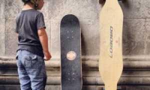 Пенни борд и скейтборд в чем разница