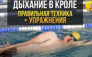 Как дышать при плавании кролем
