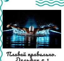 Стиль плавания баттерфляй